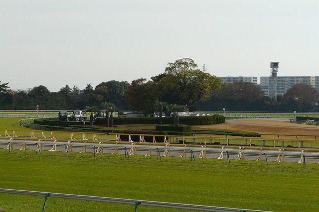 1024px-Tokyo-Racecourse-07.jpg