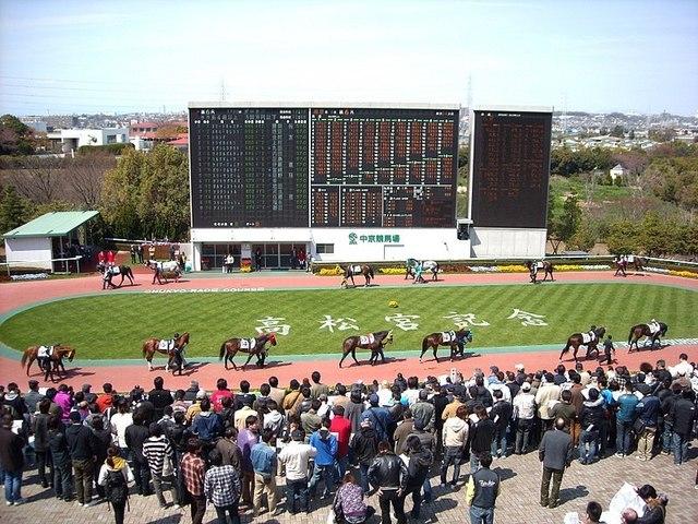 800px-Chukyo_Racecourse_Paddock_20090329.jpg