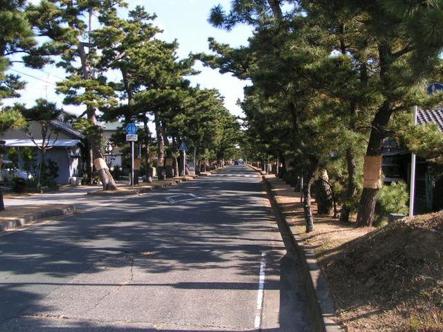 800px-Maisaka.jpg