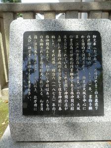 CIMG2296.JPG