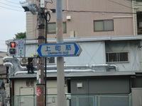 CIMG2676.JPG