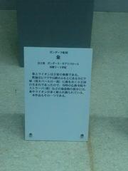 CIMG2870.JPG