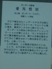 CIMG2923.JPG