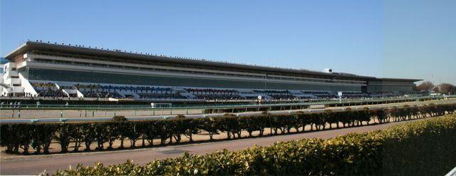 Nakayama_Racecourse01.jpg